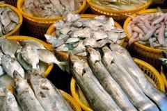 Negocio de los pescados Fotos de archivo libres de regalías