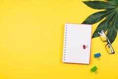 Negocio flatlay con las hojas y los accesorios tropicales del negocio Foto de archivo libre de regalías