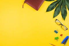 Negocio flatlay con las hojas y los accesorios tropicales del negocio Imagen de archivo libre de regalías