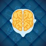 Negocio moderno Brain Concepts In Flat Design Foto de archivo