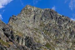 Negoiu峰顶 fagaras山罗马尼亚 库存照片