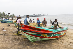NEGOMBO,斯里兰卡- 11月30 :人们收集干鱼和 库存照片