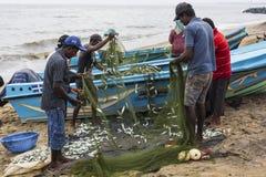 NEGOMBO,斯里兰卡- 11月30 :人们收集干鱼和 免版税图库摄影
