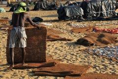 Negombo fiskmarknad Royaltyfri Bild