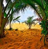 Negombo Royalty Free Stock Photo