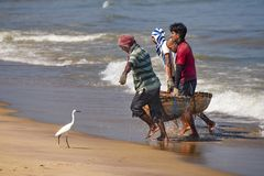 Fishermen carrying fish in baskets. Stock Photography