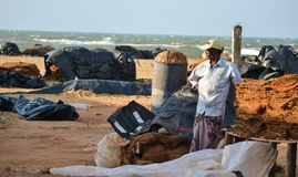 NEGOMBO, SRI LANKA, February 2018: The Man Standing on the Beach on the Fish Market between Stored Fishing Nets. NEGOMBO, SRI LANKA, February 2018: The Man Royalty Free Stock Images