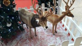 Negozi creativi di feste della decorazione di Natale Immagini Stock