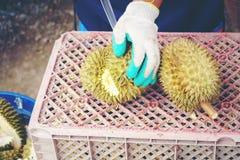 Negozio del Durian La buccia del durian, guanto, coltello, pelle di bufalo usata per immagine stock