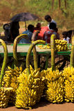 Negozio della banana Fotografie Stock