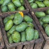Negozio della frutta del mango nello Sri Lanka immagini stock libere da diritti