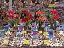 Negozio di fiore a Amsterdam 1014 Fotografia Stock