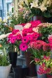 Negozio di fiore della via Immagini Stock