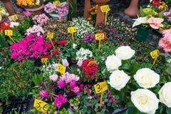 Negozio di fiore della via Fotografie Stock