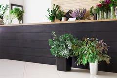 Negozio di fiore interno, piccola impresa dello studio di progettazione floreale Fotografia Stock Libera da Diritti