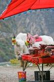 Negozio locale con i yak bianchi Fotografia Stock Libera da Diritti