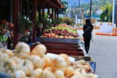 Negozio locale della frutta, commerciante in Princeton, Columbia Britannica Decorazione piacevole con la zucca, groud, frutti Fotografie Stock