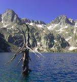 Negremeer in het Nationale Park van Aiguestortes Royalty-vrije Stock Afbeeldingen