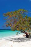 negril sju för strandjamaica miles Arkivfoto