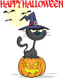 Negro Cat With de Halloween un sombrero de la bruja en la calabaza Fotografía de archivo