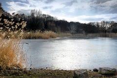 Negro congelado del lago Imagenes de archivo