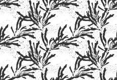 Negro de la alga marina del quelpo en textura negra Imágenes de archivo libres de regalías