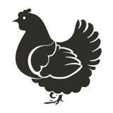 Negro de la gallina de la plantilla Imágenes de archivo libres de regalías