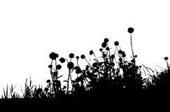 Negro de la silueta de la hierba Foto de archivo
