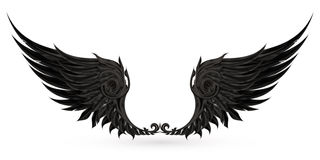 Negro de las alas Imágenes de archivo libres de regalías