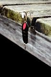 Negro de los trastos de pesca foto de archivo