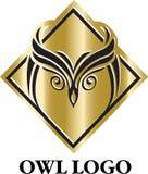 Negro del búho y plantilla del emblema del logotipo del oro Imágenes de archivo libres de regalías