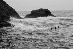 Negro del mar y con Foto de archivo libre de regalías