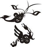 Negro del vector y pájaro del paraíso Fotografía de archivo libre de regalías