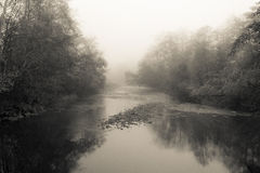 Nehalem River Fog. Nehalem River in morning fog Royalty Free Stock Photos