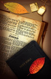 Nehemiah. A vintage Holy Bible collage with the book of Nehemiah Royalty Free Stock Photography