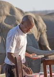 A waiter setting the table for guests in a safari lodge with a herd of elephants close by - Nehimba, Hwange National Park, stock photos