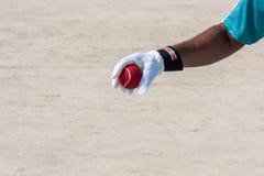 Nehmen des Fanges des roten Balls mit den Händen Stockbilder