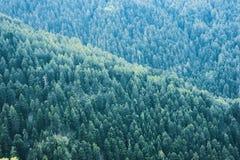 Nehmen Sie eine Wanderung entlang einem Fernabschnitt von Bergen lizenzfreies stockfoto