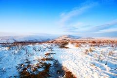 Neige à travers le parc national Devon de dartmoor Image libre de droits