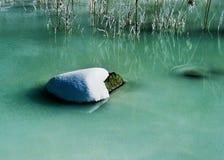 neige Photo stock