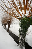 Neige Photos stock