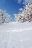 Neige Images stock