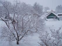 neige Image libre de droits