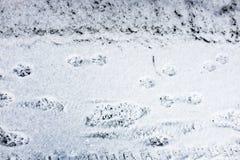 neige Images libres de droits