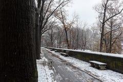 Neige au-dessus de New York Photos stock