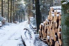 Neige aux Pays-Bas Image libre de droits