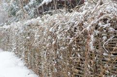 Neige blanche sur les branches et la barrière brunes minces photo libre de droits