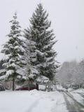 Neige chez Burnaby photographie stock libre de droits
