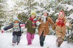 neige courante Photographie stock libre de droits