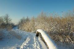 Neige couverte Images libres de droits